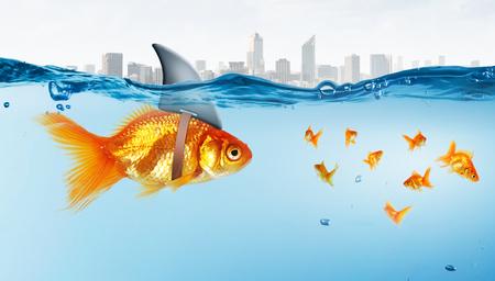 Little goldfish in water wearing shark fin to scare predators Stock Photo