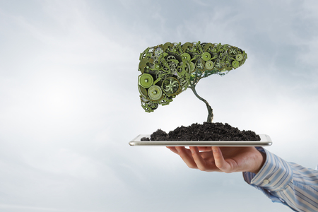 tree services company: Hand of businessman showing tablet with green gears tree on screen