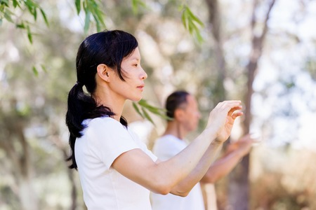 People practicing thai chi in the park in the summertime Stock Photo