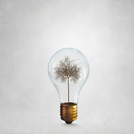 arbol de problemas: Glass light bulb with dry tree inside as energy saving concept