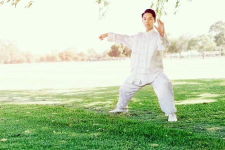 Handsome man practicing thai chi in the park in the summertime