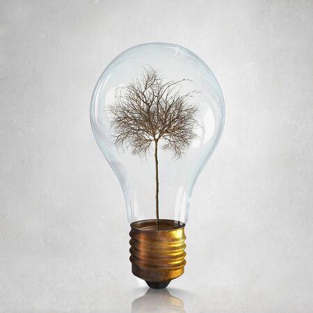 arbol de problemas: Glass light bulb with dry tree inside as energy saving concept