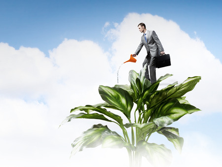 future earnings: Young cheerful businessman watering green tree with can