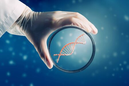 chemistry: Scientist doctor hand on dna molecule background holds glass dish