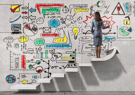 businesswoman: Back view of businesswoman drawing business strategy sketch on wall