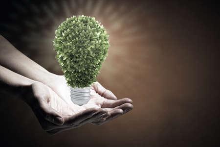 green light bulb: Hand holding eco green light bulb energy concept