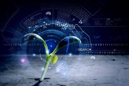 Brote verde que crece de grieta y la interfaz digital
