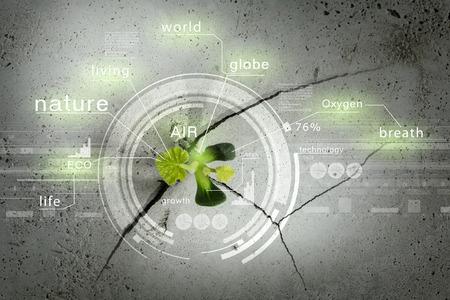 de plus en plus vert de fissure pousse et interface numérique