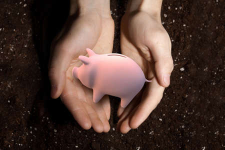 protecting your business: Close up of male palms holding piggy bank and soil at background Stock Photo