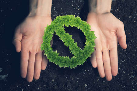 human hands: Close up of human hands holding green prohibition sign Stock Photo