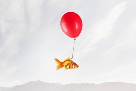 Concept du surréalisme avec des poissons d'or volant sur ballon à air