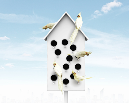 Conceptual image with nesting box and many birds living in it