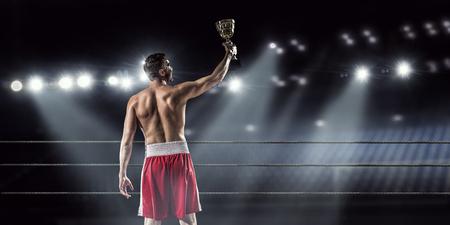 Professionele bokser op de arena in spotlights vieren overwinning Stockfoto