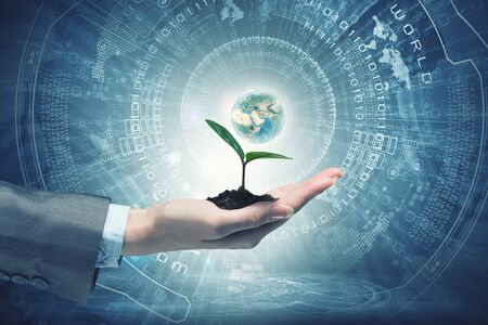 Hand of businesswoman holding with care green sprout in soil. Elements of this image are furnished by NASA Stock Photo - 61741660