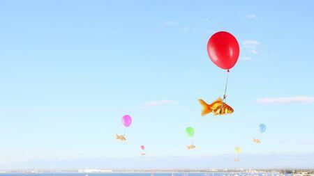 ballon de couleur voler haut dans le ciel bleu Banque d'images