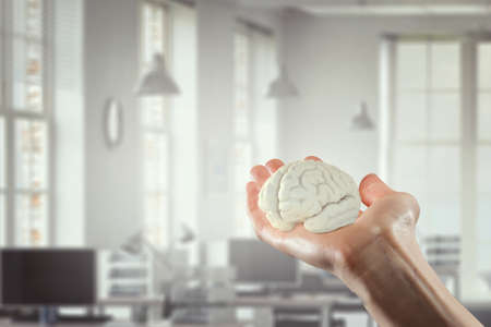 brainstem: Female hand holding human brain on office background. Mixed media