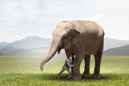 Businessman making effort to move huge elephant