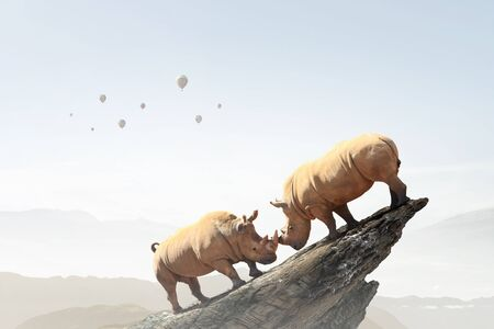 Two rhino animals on rock top as symbol of competition Stock Photo