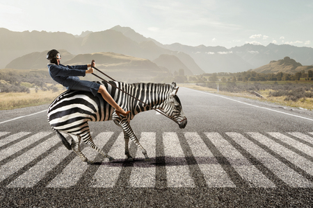 Businesswoman ride zebra . Mixed media Imagens