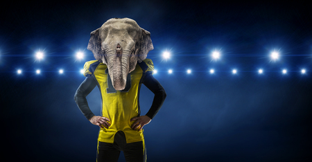 American football player with elephant head in lights of sport arena. Mixed media Stock Photo
