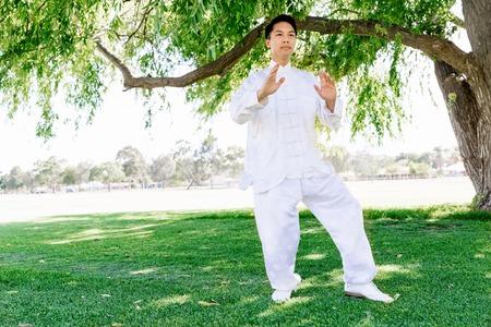 spiritual energy: Handsome man practicing thai chi Stock Photo