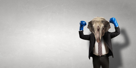 Elephant dressed in business suit . Mixed media Stock Photo