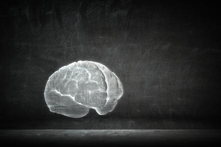人間の脳の影サインオン コンクリート壁