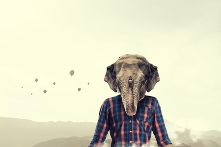 Elephant dressed in checked shirt. Mixed media Stock Photo
