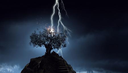 Heldere bliksem raakte de boom