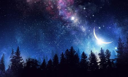 夜の森と星空と天の川。ミクスト メディア