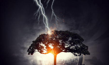 Bright lightning hit the tree Фото со стока
