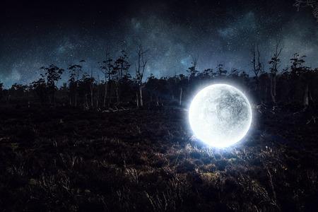보름달입니다. 혼합 매체
