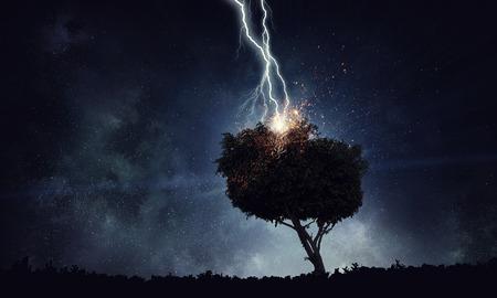 Bright lightning hit the tree Stok Fotoğraf