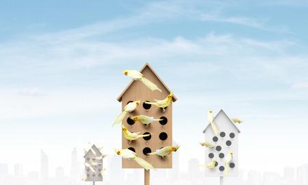 Nestende doos en veel papegaaien erin