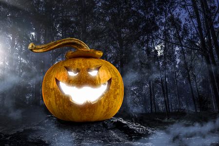 Big orange pumpkin on dark background. Mixed media