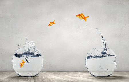 Goldfish jumping out from fishbowl with clear water