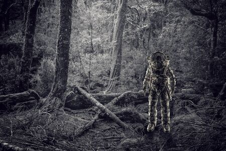 우주 비행사 숲에서 우주 탐험가입니다. 혼합 매체