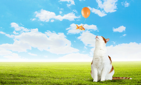 Fantasie en surrealisme met gouden vissen die op ballon vliegen. Gemengde media Stockfoto
