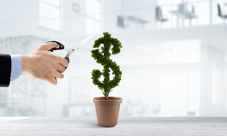 Businessman cutting leaves on money tree growing in pot Фото со стока