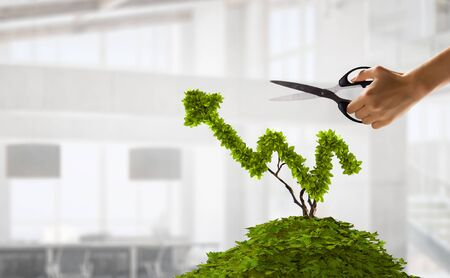 Businessman cutting leaves on money tree growing in pot Imagens