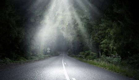 Asphalt road through forest and light coming from above