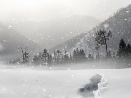 Natural landscape of snowy mountains with footpath Stock Photo