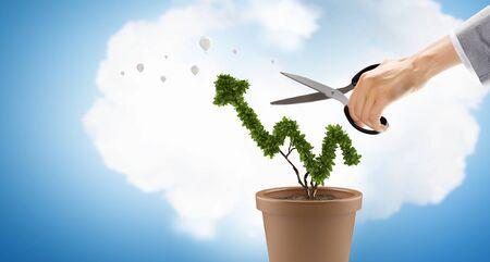 Businessman cutting leaves on money tree growing in pot Stok Fotoğraf