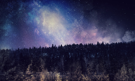 Background picturesque image of night forest and starry sky Фото со стока