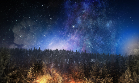 Background picturesque image of night forest and starry sky Stock Photo