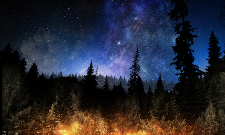 Background picturesque image of night forest and starry sky Foto de archivo
