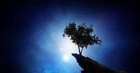 Lonely tree on rock top. Mixed media Archivio Fotografico - 111506943