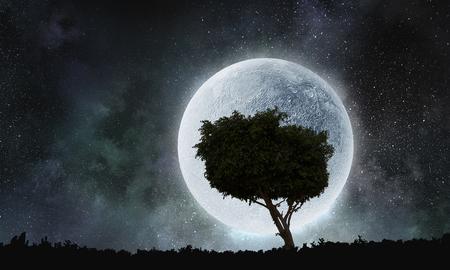 Lonely tree in night Reklamní fotografie