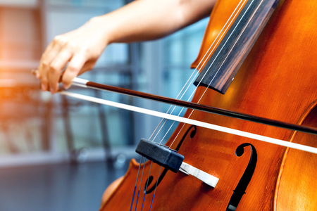 Close up of cello with bow in hands 写真素材