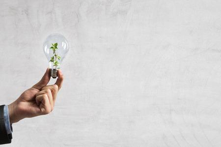 Eco green energy. Mixed media Stock Photo